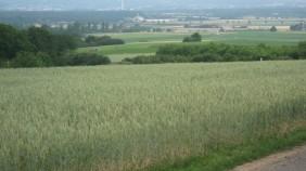 20110614092156_IMG_2768.282x158-crop.JPG