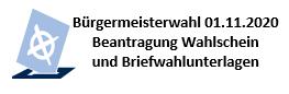 bgmwahl.PNG